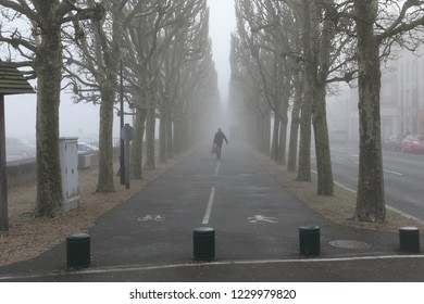 Compiegne, France - April 10, 2016: Lone man walking among dramatic tunnel of trees on a foggy morning in France