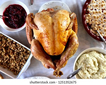 Complete Thanksgiving dinner, overhead view