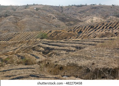 Completely denuded and barren hillsides in Manabi province on the Pacific coast of Ecuador. The results of slash and burn agriculture in tropical dry forest.