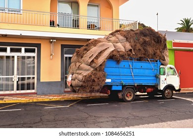 A completely overloaded open box van with pine needles of Canary pine on the island of La Palma. Roughly held together, the load hangs in the back far over the hold almost to the street