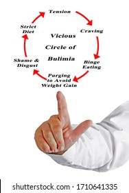 Components of  Vicious Circle of Bulimia