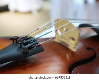 Components of the violin