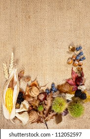 Composite of autumn fruits leaves and nuts on jute