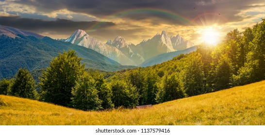 composite summer landscape in mountains under the rainbow at sunset. perfect countryside scenery with beech forest on a grassy hillside and High Tatra mountain ridge in the distance