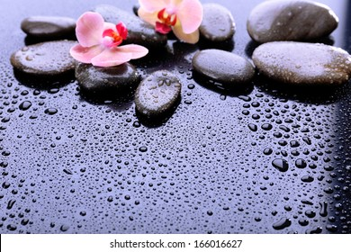 Composition with beautiful blooming orchid with water drops and spa stones, on light gray background