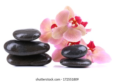 Composition with beautiful blooming orchid with water drops and spa stones, isolated on white
