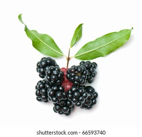 composition from a blackberry and raspberry on the white isolated background