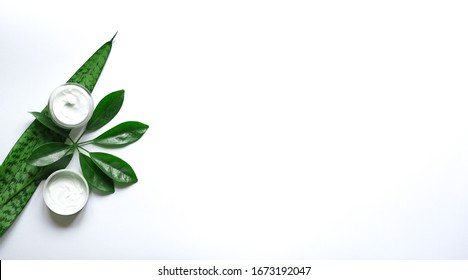 Composition with body care products, wisp and green leaf on white background, top view, copy  space flat lay.