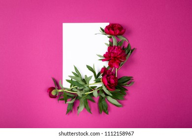 Composition of clean sheet of paper decorated with marooned peonies flowers on dark pink background with copy space. Top view, Flat lay.
