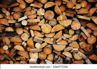 Composition of the cut firewood