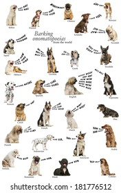 Composition of dog barking onomatopoeias from the world, english version