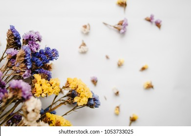 Composition dried colored flowers on a white background. Copy space. Romantic flowers. Place for text and design. Greeting card. Flat lay, top view. Bokeh colorful, blurred, selective focus.