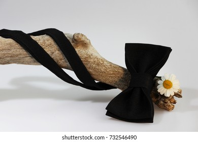 Composition: Extravagant black official classic bow tie, small chrysanthemum flower similar to chamomile and wooden stick curve on a white background.