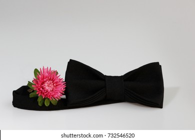 Composition: Extravagant black official classic bow tie and small flower pink aster on a white background.