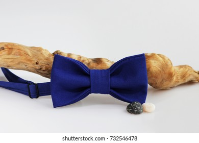 Composition: Extravagant blue bow tie twisted wooden branch and sea pebbles on a white background.