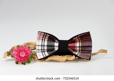Composition: Extravagant red checkered tie, small flower pink aster and wooden stick curve on a white background.
