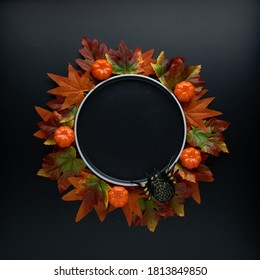 Composition of fall or autumn leaves, pumpkins and spider around an empty black plate on a dark background. Autumn, fall, halloween, thanksgiving day concept. Flat lay, top view, copy space..