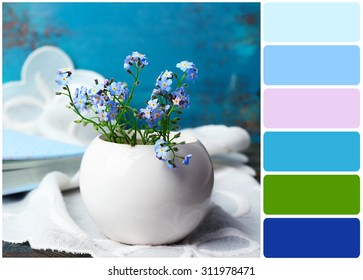 Composition with Forget-me-nots flowers and palette of colors