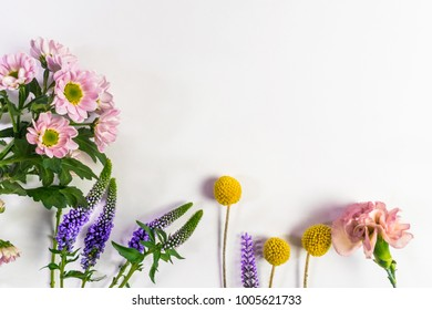 Composition from fresh flowers on a white background.