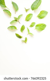 Composition with Fresh mint leaves on white background, top view