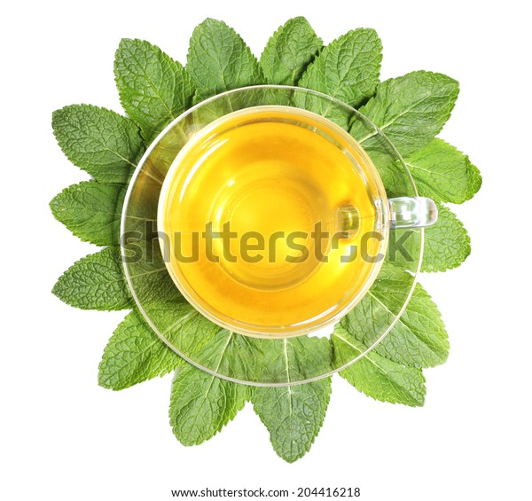 Composition of fresh mint leaves, mint tea in glass cup and brown sugar isolated on white