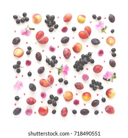 A composition of fruits in a square format on a white background. Pattern made from fresh fruits. Top view, flat design. Collage of plum, grapes, apples, flowers, nectarines.