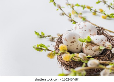 Composition with green buds on branches, decorative nest with easter eggs on a light background