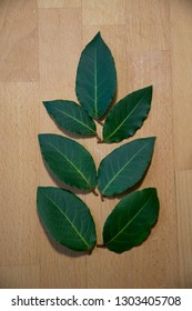 composition from laurel leaves