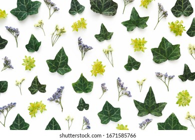 Composition made of flowers and leaves on white background. Flat lay. View from above.