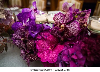 composition of orchid flowers