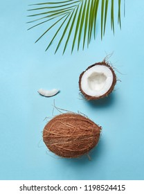 Composition from a palm green leaf and a coconut in the form of a smile face on a blue background with space for the text. Creative layout for your ideas. Flat lay