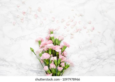 composition of pink carnation flowers on a marble background. Top view, flat lay