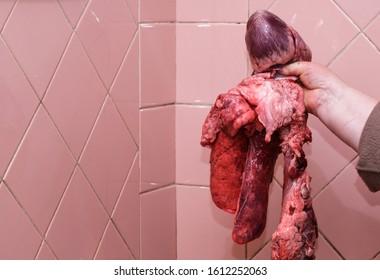 Composition of pork, liver, pig, lung, pork, heart, pork in the market.