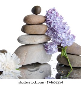Composition of stacked pebbles with lilac, on a white wet background