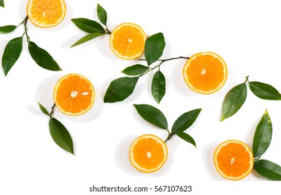 Composition with twigs of orange tree and fruits isolated on white background. Above view.