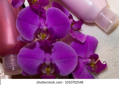 composition vials of pink and crimson with a branch of orchids on a white Terry towel