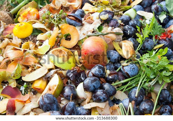 Compost bin in the garden. Composting pile of rotting kitchen fruits and vegetable scraps