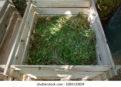 compost bin of wood filled with weeds from the garden