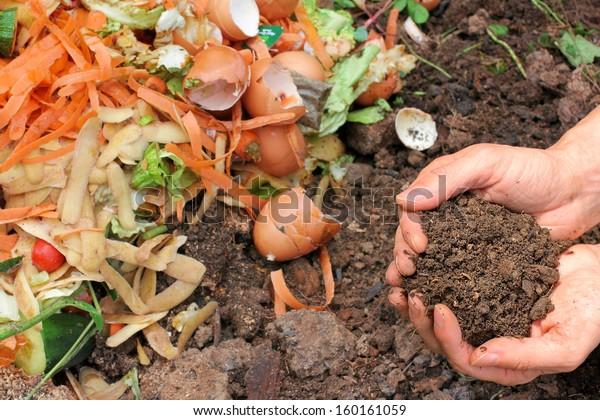 Compost con tierra composa