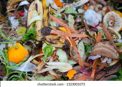 Compost, mixed vegetables and fruits