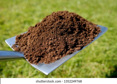 Compost on a flat gardening spade.