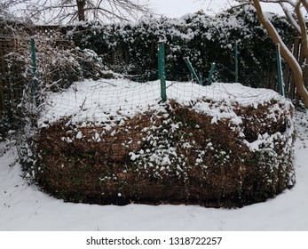 compost pile with debris and leaves and snow