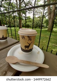 compostable cup lid and spoon on a recyclable plate taken in the Phoneix Park Dublin Ireland on the 13/07/2019