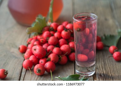 compote or drink of Crataegus commonly called hawthorn, thornapple, May-tree, whitethorn, or hawberry