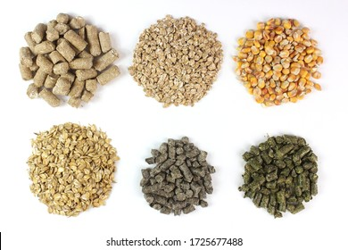 Compound feed for animals, livestock, in circles isolated on white background