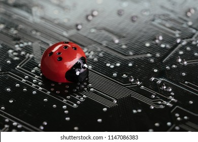 Computer bug, failure or error of software and hardware concept, miniature red ladybug on black computer motherboard PCB with soldering, programmer can debug to search for cause of error.