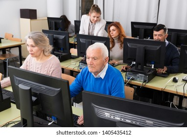 Computer lessons for adults. Group of senior people learning to use computers with young female tutor in classroom