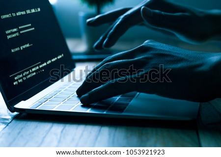 Computer Programmer Hacker Prints Code On Stock Photo (Edit Now ...