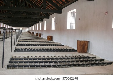 Con Dao, Vietnam - December 30, 2016: Infamous 'Tiger cages' in Con Dao Prison on Con Son Island. The prison was built by French colonialists. The prison is now a museum.