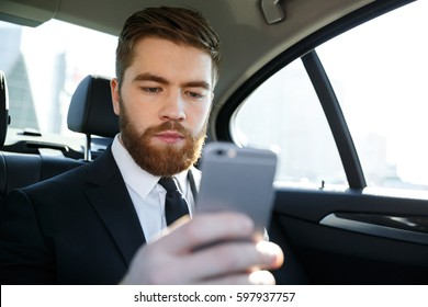Concentated bearded business man in suit looking at mobile phone in his hand while sitting in the back seat of a car